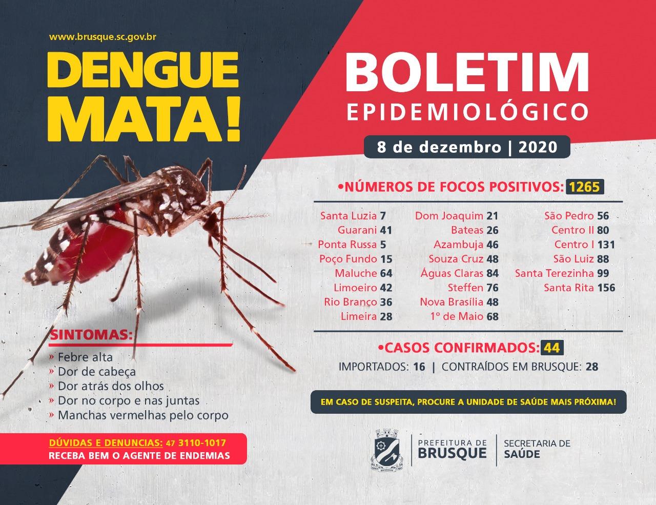 Confira o boletim epidemiológico da dengue desta terça-feira (08)