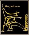 Portal Capoeira Apresentação de Capoeira na Dom Mendo Bar Capoeira