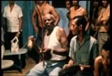 Portal Capoeira MESTRE BIMBA AGORA EM BELO HORIZONTE Eventos - Agenda