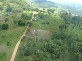 Portal Capoeira Parque Memorial Quilombo dos Palmares é inaugurado em Alagoas Cultura e Cidadania