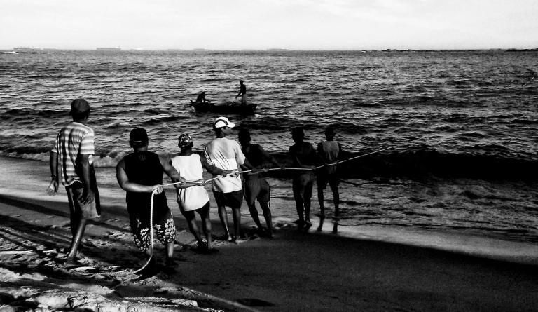 Portal Capoeira Puxada de Rede Maculelê, Puxada de Rede e Samba de Roda
