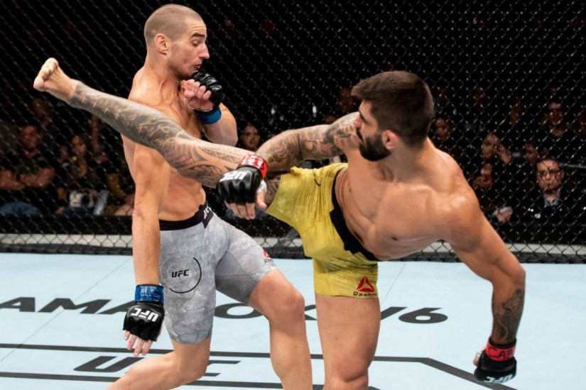 Portal Capoeira Elizeu Capoeira comemora nocaute impressionante no UFC Geral