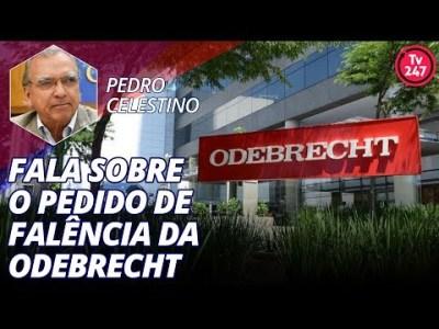 Pedro Celestino fala sobre o pedido de falência da Odebrecht