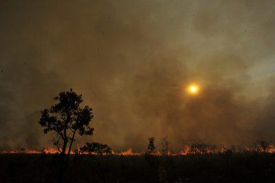 """Geólogo combate o """"alarmismo ambiental"""""""