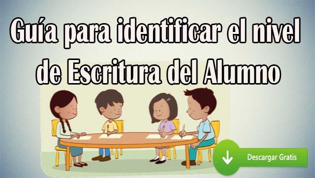 Guia para identificar el nivel de escritura del alumno