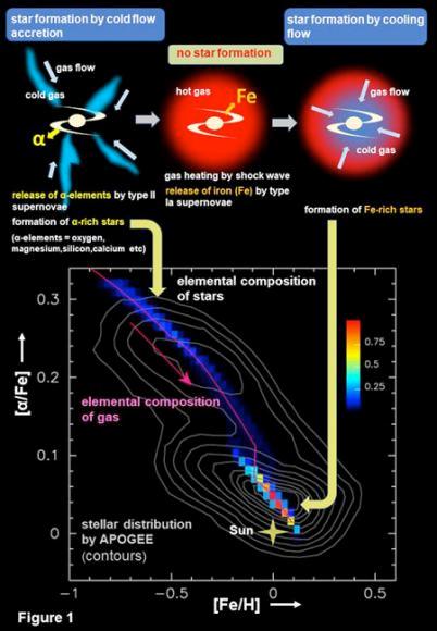 Via Láctea - 2 fases de formação.