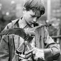 10 Filmes Sobre a Infância que Você Precisa Assistir