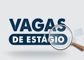 IEL AMAZONAS ABRE 17 VAGAS DE ESTÁGIO EM MANAUS