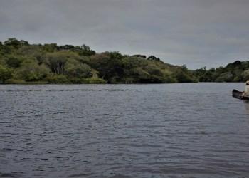 Membros da PanAmazônia debatem alternativas para preservação da Região