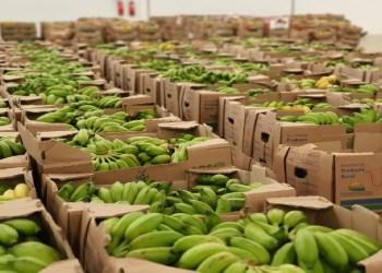"""Campanha """"Natal pra Todos Nós"""" da ADS vai doar 20 mil cestas natalinas a pessoas em situação de vulnerabilidade"""
