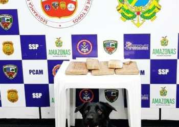 Quatro quilos de drogas são apreendidos pela Base Arpão