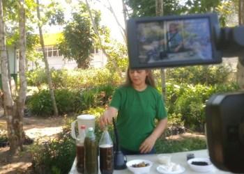 Videoaula ensina como produzir biofertilizante caseiro