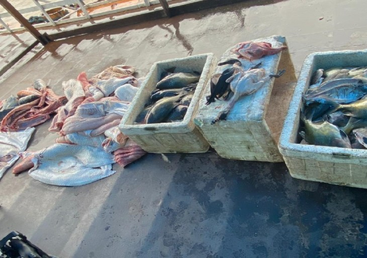 Base Arpão prende dono de embarcação e apreende 670 quilos de pescado ilegal