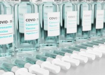 Fiocruz faz sua maior entrega de vacinas: 6,5 milhões de doses