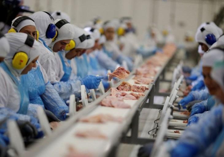 Arábia suspende compra de carne de ave de 11 frigoríficos do Brasil