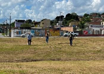 Prefeitura de Manaus vistoria locais para novos plantios de mudas