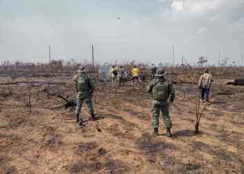 Operação Tamoiotatá fiscaliza oito locais com registro de crimes ambientais em Apuí e Humaitá
