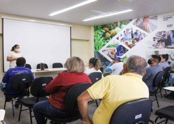 Idam inicia capacitação de técnicos para fortalecer o setor de produção de cacau