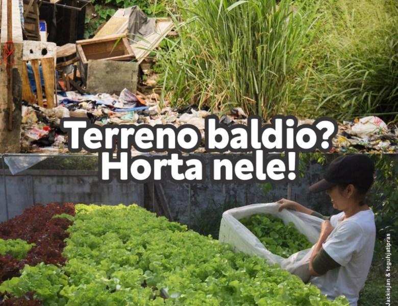 MPAC propõe transformar terrenos vazios em hortas urbanas