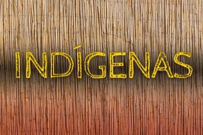 MPF recomenda alteração em GT para assuntos de Covid-19 em Terras Indígenas no Acre