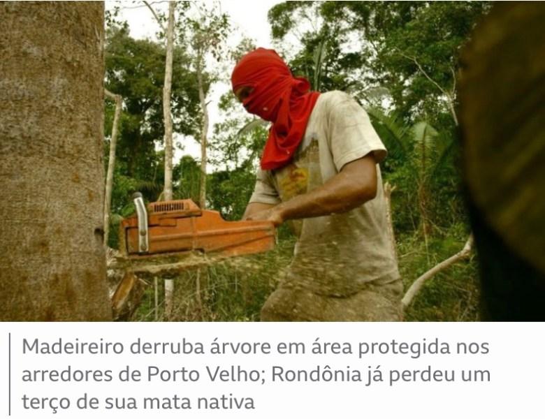 Investigação revela terras protegidas da Amazônia à venda no Facebook