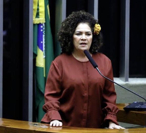 """""""Se pretendia derrubar Guedes, Bittar pode acabar derrubando seu mito"""", diz Perpétua Almeida sobre orçamento de Marcio Bittar"""