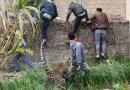 Leopardo fere seis pessoas e é caçado por mais de cem na Índia