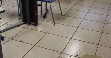 Professor é esfaqueado por aluno dentro de sala de aula no Paraná, diz polícia