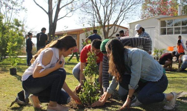 Presentan propuesta para que por cada graduado se plante un árbol