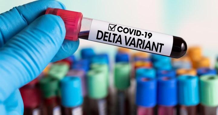 ¿Cómo defendernos de las variantes Delta y Delta Plus del virus SARS-CoV-2?*