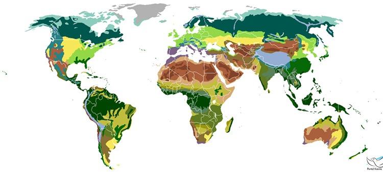 Ecologia: o desafio de novos ares da evangelização