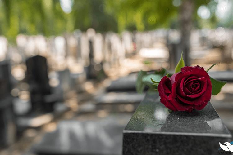 Todos os Fiéis Falecidos 2020 - Ano A
