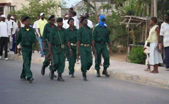 Homens armados da RENAMO voltam a semear pânico em Mossurize