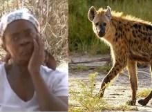 Rucai Jafari de sessenta e cinco anos de idade é acusada de se transformar em hiena e provocar pânico a calada da noite. Há dois meses que Jafari está na boca dos moradores