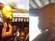 Uma manga com formato de cabeça humana arrastou multidões e provocou agitação esta semana na ilha de Rizenda, ao longo do baixo Zambeze