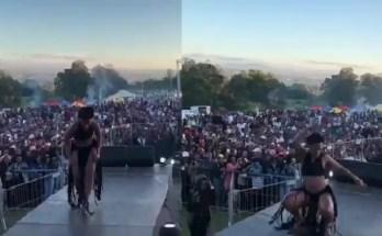 A dançarina e animadora sul-africana Zodwa Wabantu teve uma relativamente grande em 2017, quebrando limites para ela e a cultura do entretenimento.