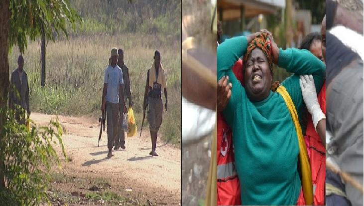 A província de Cabo Delgado registou mais um ataque, Um grupo armado provocou 5 mortos na noite de quarta-feira na aldeia de Namaluco, distrito de Quissanga