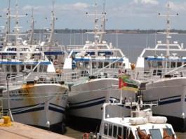 Só falta mesmo a licença! A Empresa Moçambicana de Atum ( EMATUM ) tem trabalhadores, embarcações e tem direito de pescas