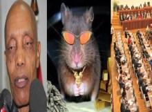 Deputados da Bancada parlamentar da Frelimo apontam dedo a Paulo Vahanle pela praga de ratos na residência oficial do Governador.