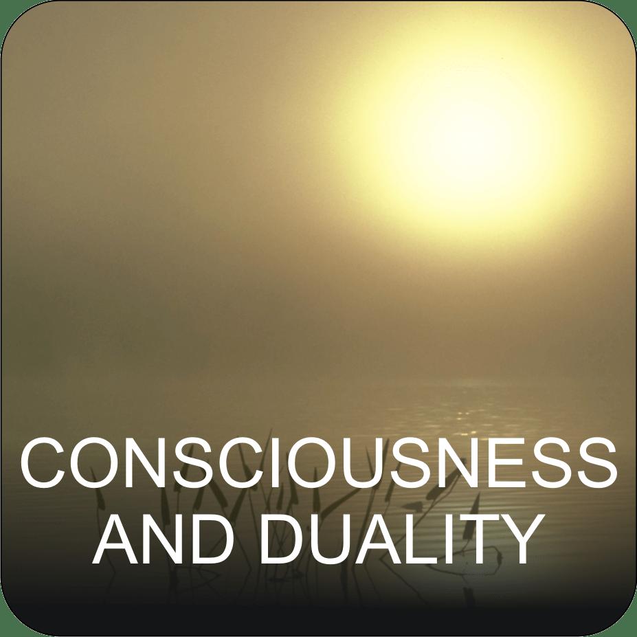 CONSCIOUSNESS & DUALITY