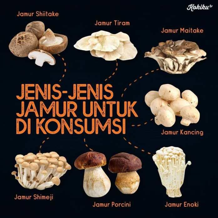 Info kuliner Hi Foodies Yuk kita lihat aneka jenis Jamur