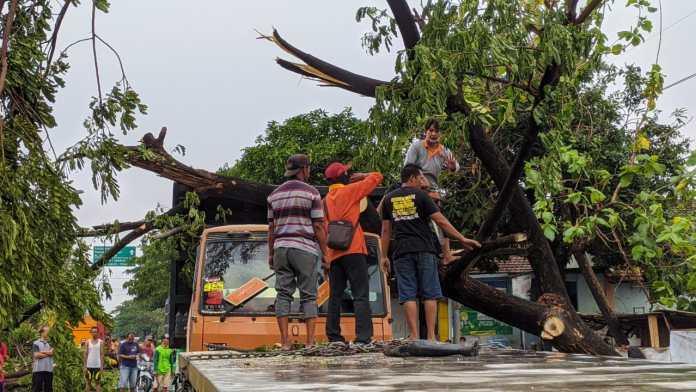 Angin Kencang Terjang Mojokerto Puluhan Rumah Rusak dan Pohon Tumbang