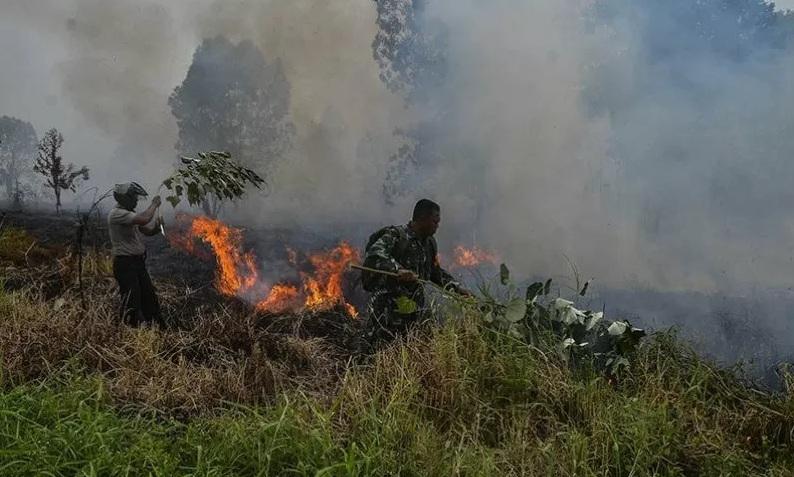 Darurat Karhutla di Riau Berakhir, BNPB Tarik Empat Helikopter