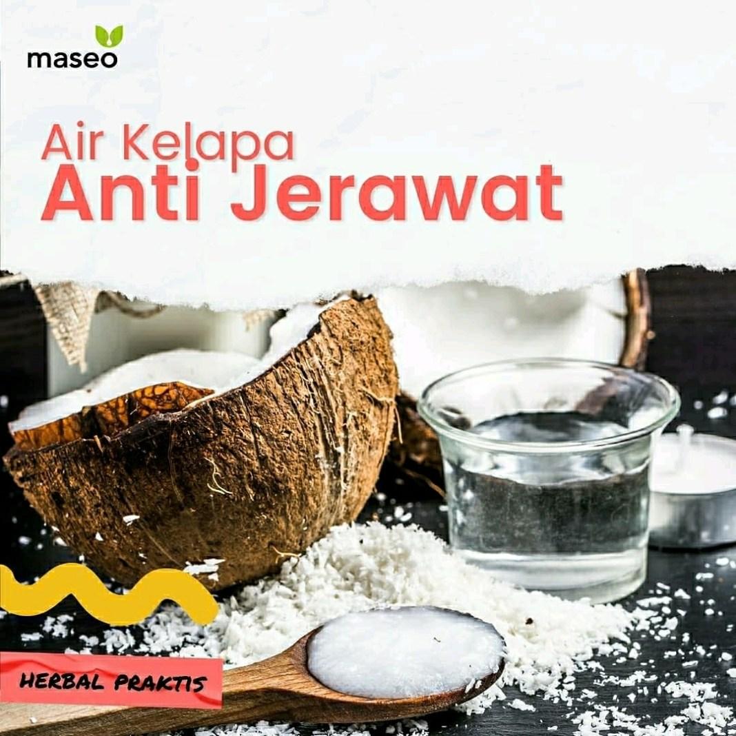 AIR KELAPA ANTI JERAWAT . BAHAN Air Kelapa Muda Kunyit sejari Teh Bubuk 3 sdt . ...