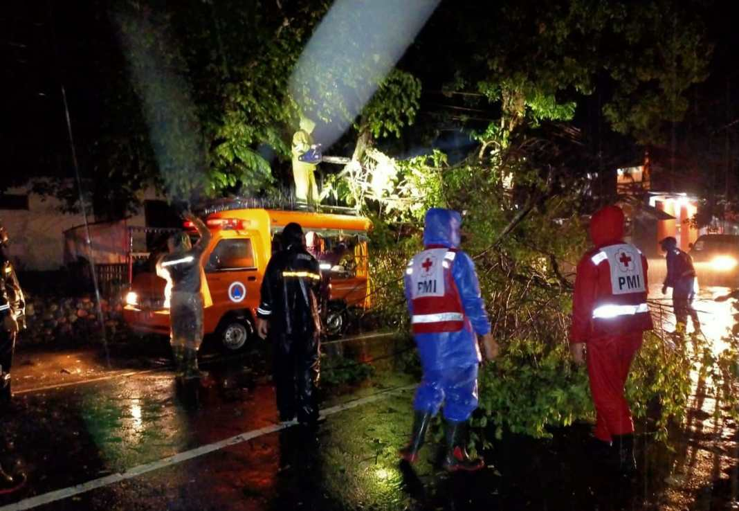 Magetan Mencekam, Hujan Deras 6 Jam, Akibatkan Tebing Longsor dan Pohon Tumbang