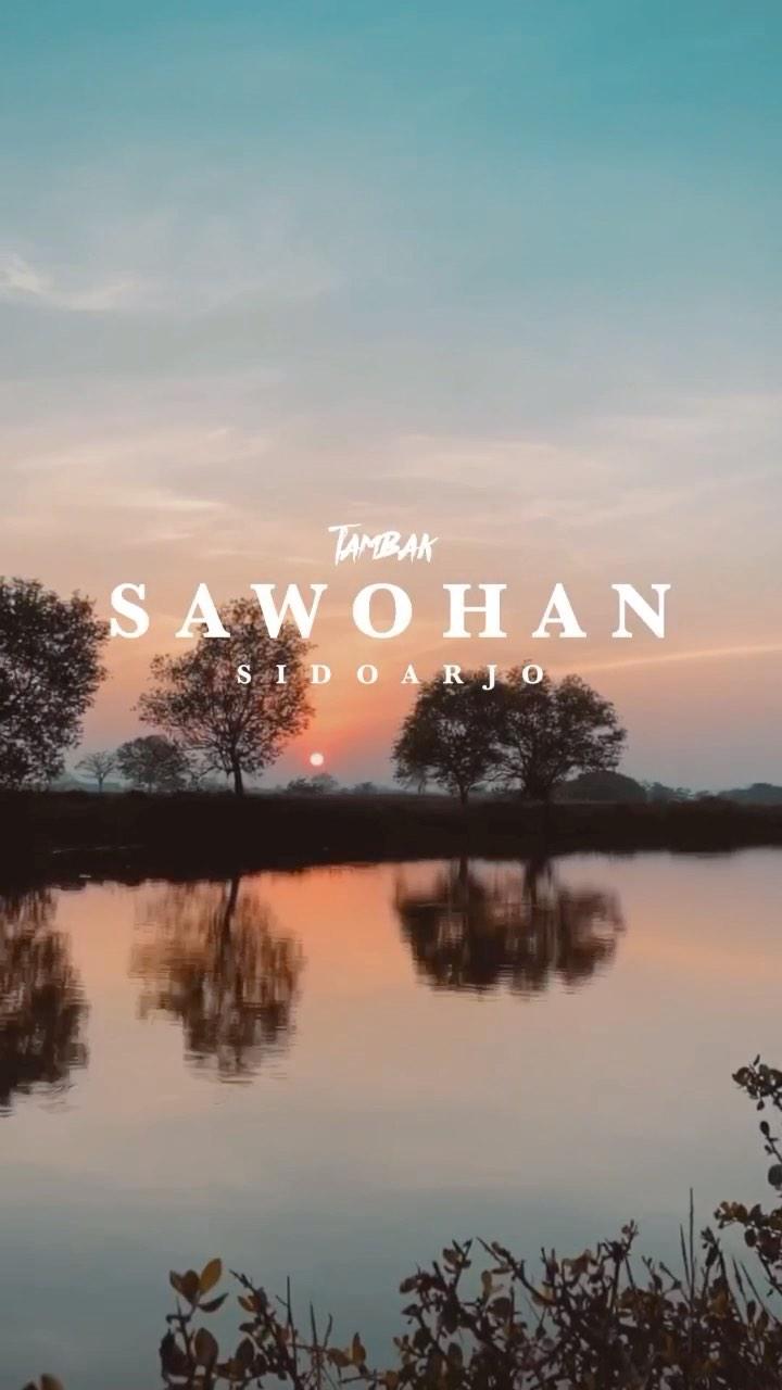 Tambak Sawohan  selamat pagi sobat tambak hehe tambak sawohan terkenal banget penghasil urang w…
