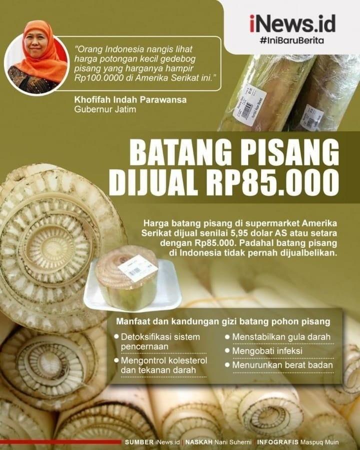 Info sehat, Gubernur Jawa Timur (Jatim) Khofifah Indah Parawansa terkejut dengan mahalnya harga gedebok ata…