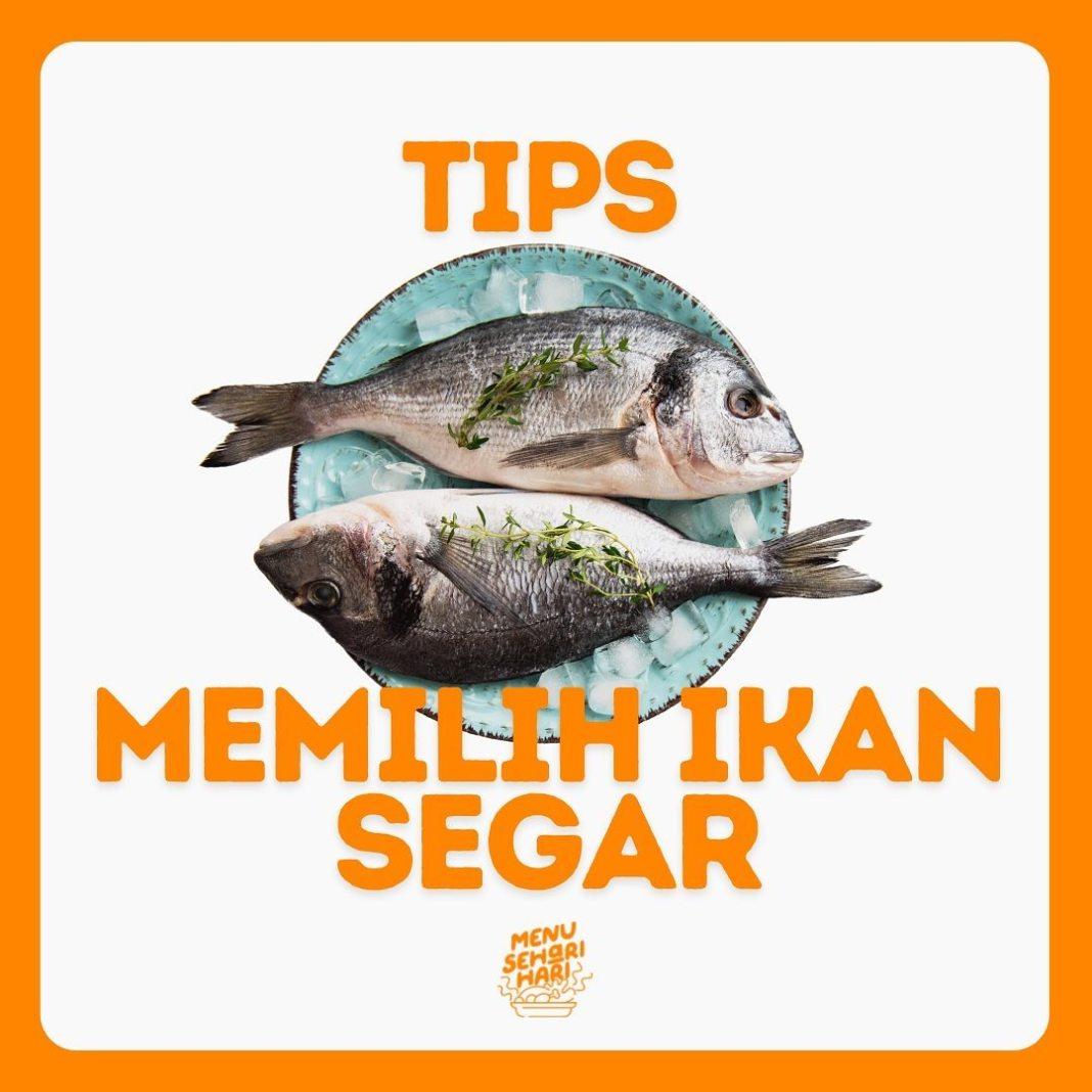 Info kuliner, untuk mommies yang bingung cara memilih ikan segar di pasar atau swalayan kesayangan kalian, yuk…