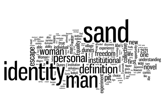 The Choice of Identity word cloud