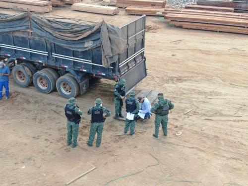 Em operação contra desmatamento, Batalhão Ambiental apreende maior carga de madeira ilegal neste ano no AM